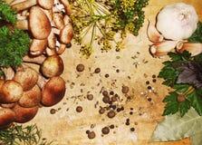 Vorbereitung von Pilzen für das Salzen mit Gewürzen auf einem hölzernen Brett Stockfoto