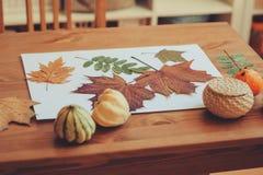 Vorbereitungen für Herbsthandwerk mit Kindern Herbarium von getrockneten Blättern lizenzfreie stockfotografie