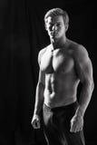 Vorbildliche darstellende Muskeln der männlichen Eignung im Studio lizenzfreie stockfotos