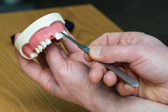 Vorbildliche medizinische Implantate, welche die Ausrüstung prüfen Stockfotos