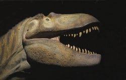 Vorbildlicher Kopf und Stutzen des Dinosauriers getrennt Lizenzfreie Stockbilder