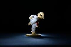 Vorbildliches Karate Fighter Stockbilder