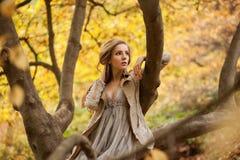 Vorbildliches Sitzen des stilvollen Mädchens auf einem Baumast mit den eine Handstützen Stockfotos