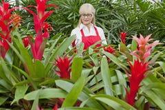 Vorderansicht einer älteren Frau, die im botanischen Garten arbeitet Stockfotografie