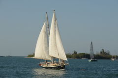 Vorderansicht Segelboot unter Segel Stockfotografie