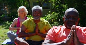 Vorderansicht von den ?lteren Leuten der aktiven Mischrasse, die Yoga im Garten des Pflegeheims 4k durchf?hren stock footage