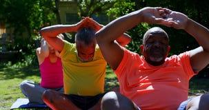 Vorderansicht von den ?lteren Leuten der aktiven Mischrasse, die Yoga im Garten des Pflegeheims 4k durchf?hren stock video