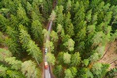 Vorderansicht von zwei Ladung-LKWas LKWs, die durch Wald auf narro sich bewegen lizenzfreie stockfotos