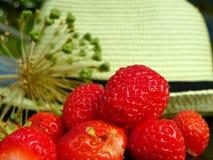 Vordere Erdbeeren und ein Hut Stockfotografie