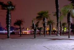 Vordere schneebedeckte Nacht des Sees Stockbild