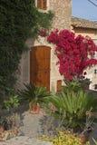 Vorderer Garten mit Anlagen Lizenzfreie Stockbilder