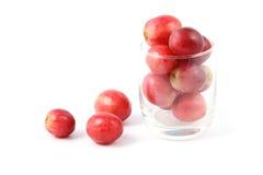 Vorderseiteglas Traubenfrucht Lizenzfreie Stockfotografie