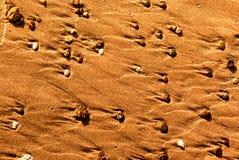 Voren in het zand van het strand door stenen wordt gevormd die royalty-vrije stock fotografie