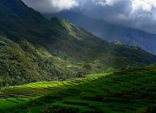 Vorfallleuchte auf dem Hintergrund der Berge Stockbilder