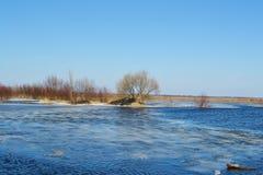 Vorfrühling auf dem Fluss Pripyat Stockfotografie