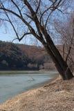 Vorfrühling entlang dem Susquehanna River Stockfotos