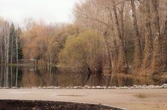 Vorfrühling im Park Lizenzfreies Stockfoto