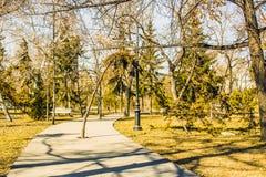Vorfrühling im Stadtpark Stockbilder