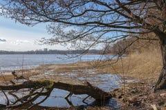 Vorfrühlingslandschaft auf dem Fluss und den Bäumen ohne Blätter an einem sunnu und an einem bewölkten Tag stockfoto