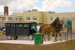 vorgespannte Pferde benutzt, um amische Lastwagen zu ziehen stockbilder