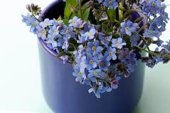 Vorget-mim-não flores Imagens de Stock Royalty Free