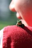 Vorgewählter Fokus des kleinen Frosches auf Schulter des Kindes Lizenzfreies Stockbild