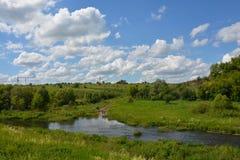 Vorhol flod i solig dag för sommar Fotografering för Bildbyråer