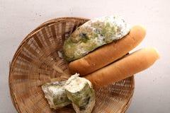 Vorm op brood in de mand Het beste vóór datum is lang geleden met dit beschimmelde voedsel verlopen Geïsoleerde achtergrond royalty-vrije stock afbeelding