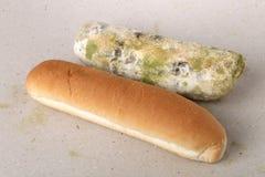 Vorm op brood Het beste vóór datum is lang geleden met dit beschimmelde voedsel verlopen Ruimte voor tekst stock foto's