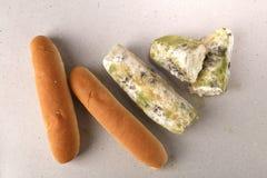 Vorm op brood Het beste vóór datum is lang geleden met dit beschimmelde voedsel verlopen Ruimte voor tekst royalty-vrije stock fotografie