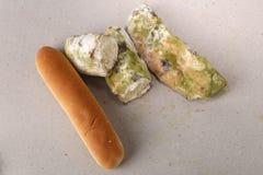 Vorm op brood Het beste vóór datum is lang geleden met dit beschimmelde voedsel verlopen Ruimte voor tekst stock foto