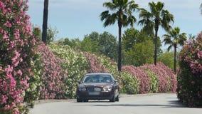 Vornehmes Auto, das hinunter Straße mit blühenden Büschen, nähernde private Villa läuft stock footage