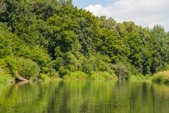 Vorona flod Arkivfoton