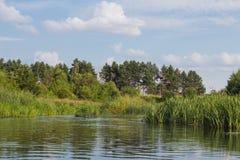 Vorona rzeka Obraz Royalty Free