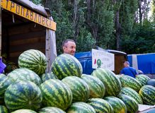 Trade in watermelons in the food market stock image