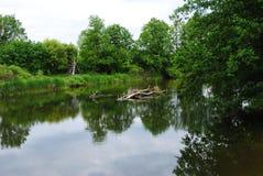 Voronezh rzeka, Rosja Zdjęcia Stock