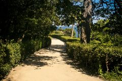 Crimea Vorontsov Palace Park Walk-road along Sea. Vorontsov palace park walk-road along bushes under green trees against blue sky in Crimea royalty free stock images