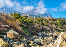 The Vorontsov Park against Ai-Petri mount. The Vorontsov Park on the Black Sea coast against Ai-Petri mount. Crimea stock images