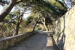 Vorontsov Park in Alupka. A wonderful alley of Vorontsovsky Park in Crimea royalty free stock image