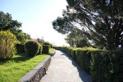 Vorontsov Park in Alupka. A wonderful alley of Vorontsovsky Park in Crimea royalty free stock photography