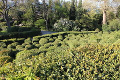 Vorontsov Park in Alupka. A wonderful alley of Vorontsovsky Park in Crimea royalty free stock photo