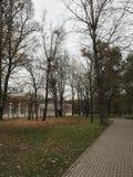 Vorontsovo Park, Moskau Lizenzfreies Stockbild