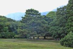 Vorontsovpark in Alupka - een meesterwerk van landschapsart. Stock Afbeeldingen