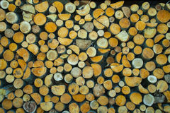 Vorrat an Brennholz Stockfotos