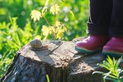 Vorschülerfüße in den Stiefeln des roten Gummis, die auf Baum stehen stockbild
