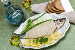 Vorschmack, chopped fish, chopped herring Royalty Free Stock Photo