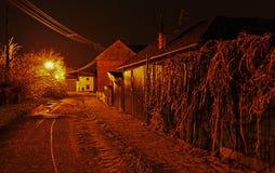 Vorst op de bomen en de straat bij nacht stock fotografie