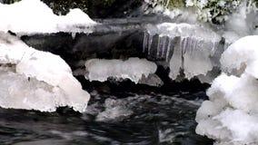 Vorst sneeuw grote kei in duidelijk koud water van bergrivier De kleine ijskegels schitteren boven kristalwater van lawaaierige s stock video