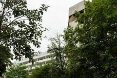 Vorstadtgebiet mit grünen Bäumen Lizenzfreie Stockfotos