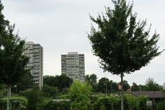 Vorstadtgebiet mit grünen Bäumen Lizenzfreies Stockfoto